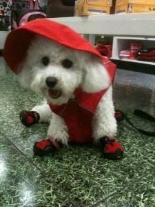 Obi rain coat