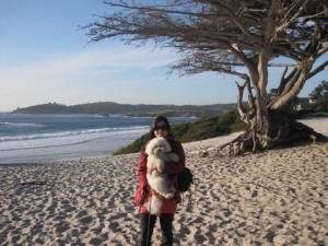 Kelly with Obi at Carmel Beach