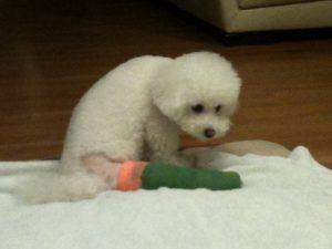 obi after surgery