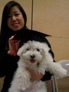 Obi graduating from puppy class