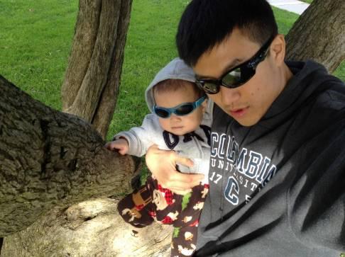 Let's climb a tree