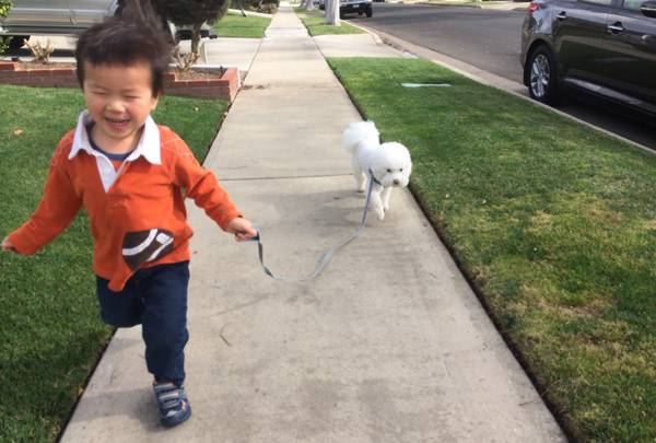 Ethan running with obi
